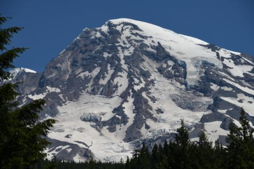 Mount Rainier  Snow Clad Peak
