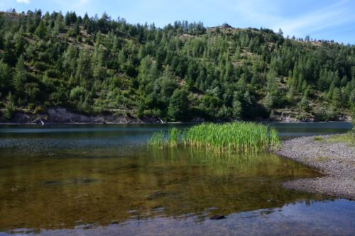 ColdWater Lake scenery