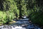 Narada Falls flowing down
